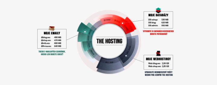 Oplatí sa prejsť na The Hosting z Custom hostingu?